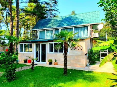"The house in forest kaprovani ""Sesil S"" 60m to sea"