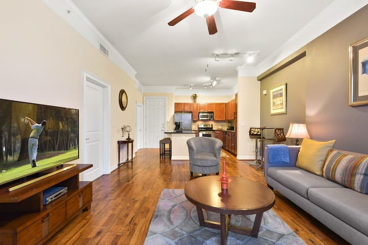 DELUXE 1 BD NEAR EVERYTHING! - Houston - Byt