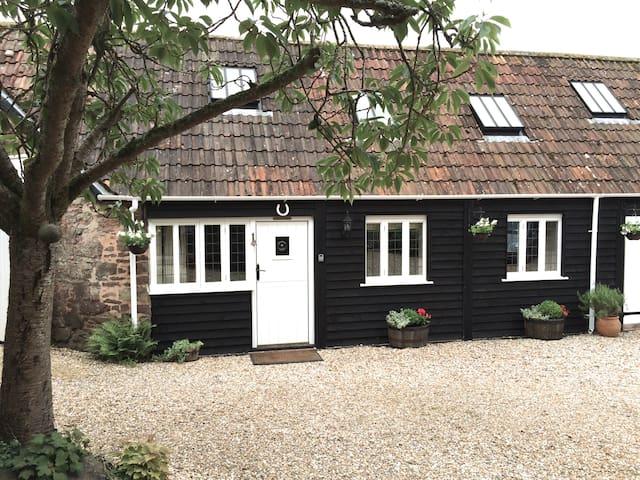 Newcourt Barn, Silverton - Silverton - Haus