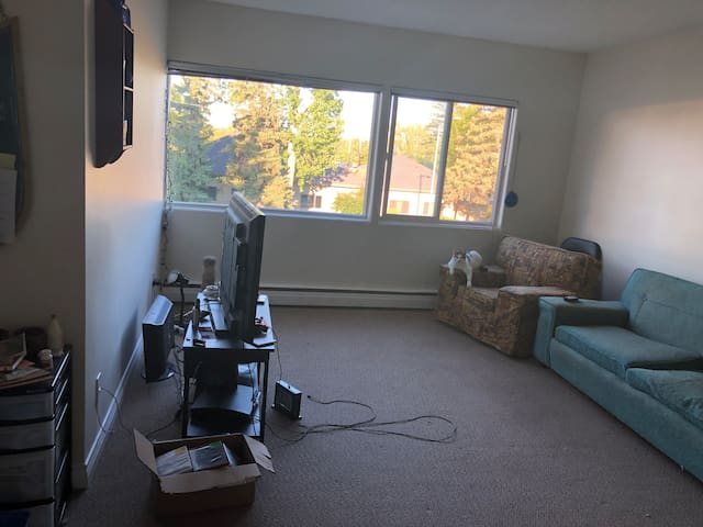 Humble apartment: 15 minute drive to downtown!