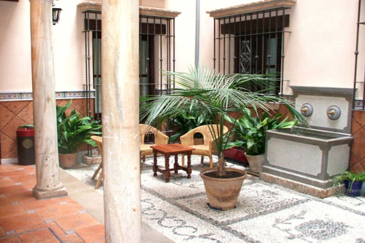 Great location in historic 16th century bulding ! - Granada - Apartment