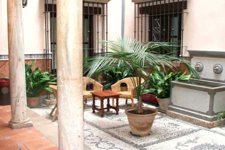 Great location in historic 16th century bulding ! - Granada - Apartment