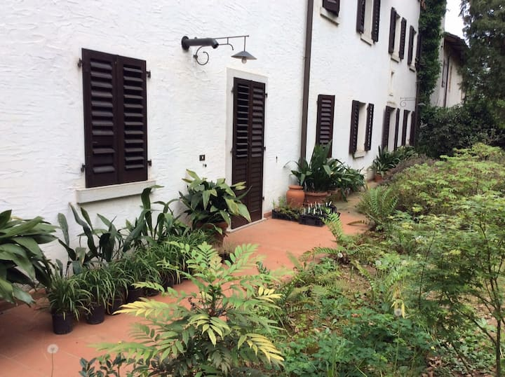 Garden View Apartment 2