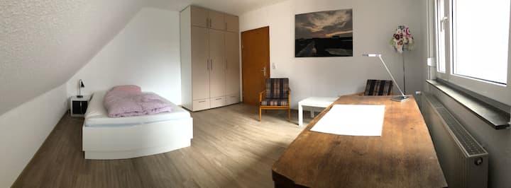 Wohnung mit 3 Zimmern, komplett renoviert.