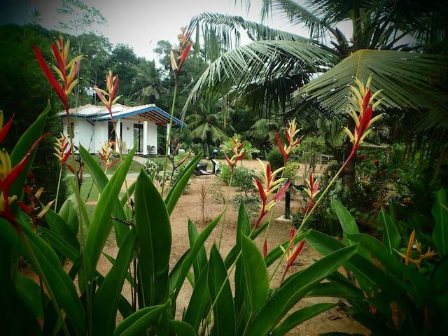 Birdsvoice Villa