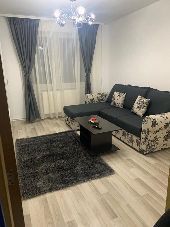 Apartament central 2 camere in regim hotelier, lux