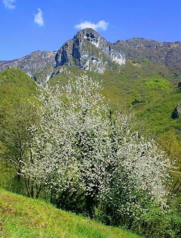 Camera accogliente in montagna - Val Brembilla - Huis