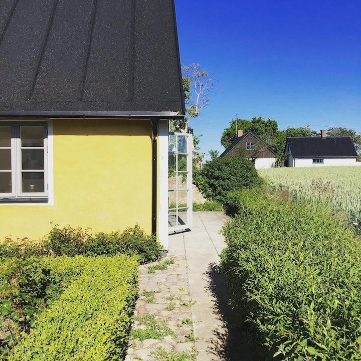 Charming cottage in Österlen, south of Sweden