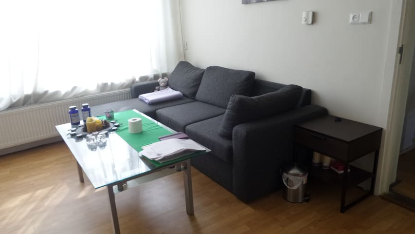 Big private room with comfy sofabed - Rotterdam - Byt