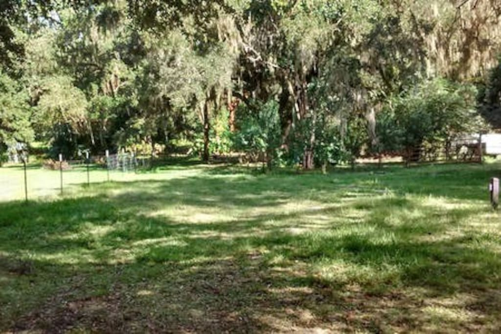 Enjoy the Great Outdoors at a Micro Farm Cabin nestled back in the Oaks!