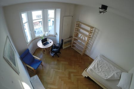 Nice large room 5 minutes walk from Messe Basel - Basel - Huoneisto