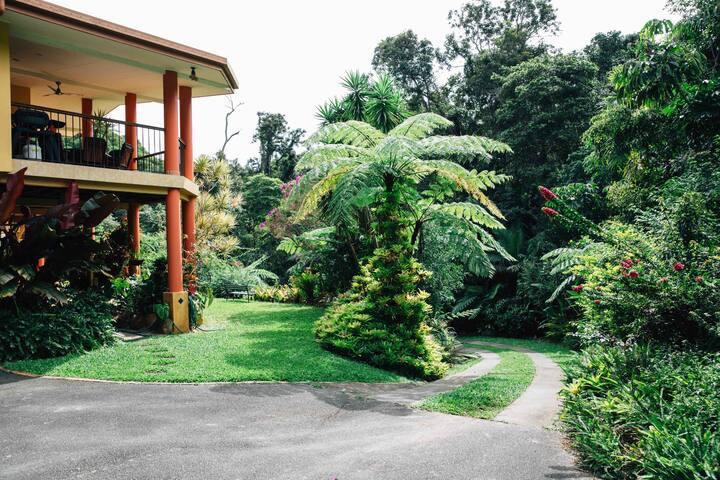 Beautiful Rainforest Retreat