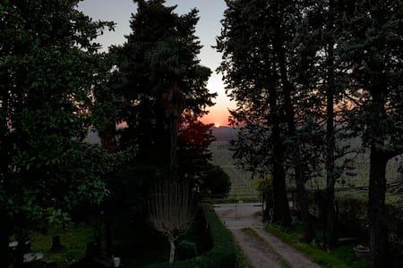 Un angolo verde di Valpolicella