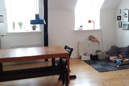 Big bright apartment in the heart of Copenhagen - København