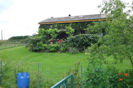 maison de la Corbette - Cluny - Hus