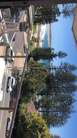 Room available in beach front apartment in Dee Why