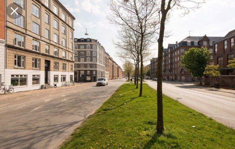Cozy apartment near the center of Copenhagen
