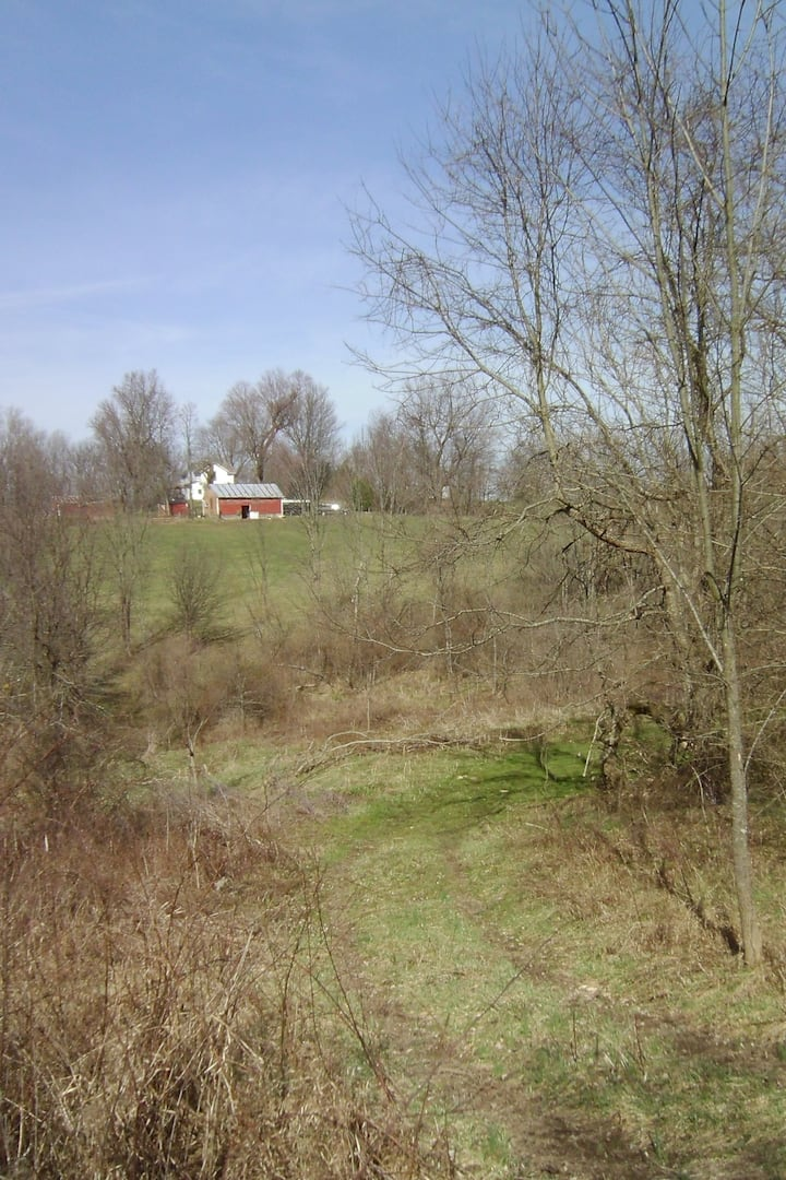 Tenbrooks Farm -trail ride