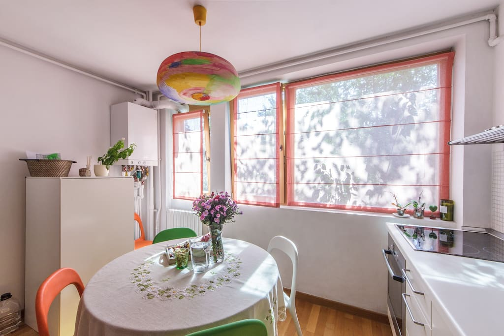 Bright Aining Area in the Kitchen