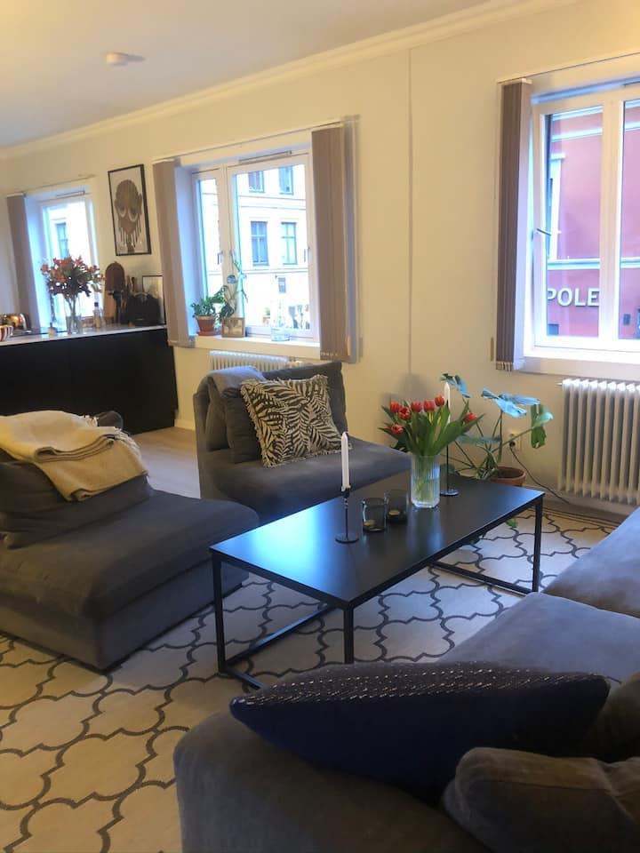 Modern apartment in the heart of Grunerløkka.