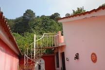 Vista de la  parte de atras  de la casa  se encuentra rodeada de bellos  bosques