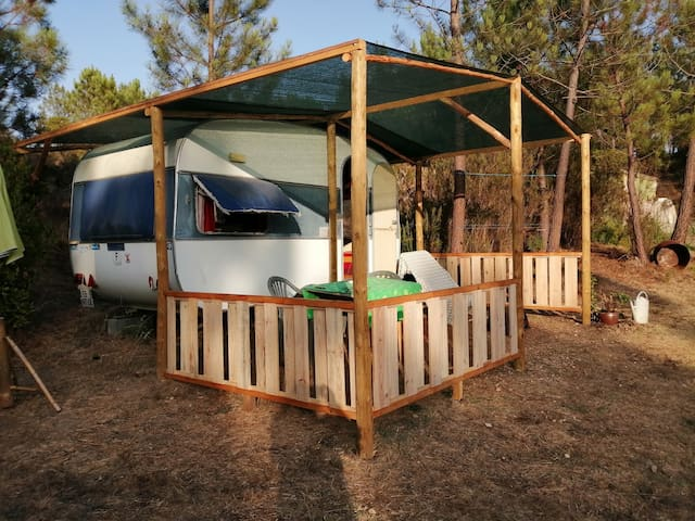 Caravane en pleine nature