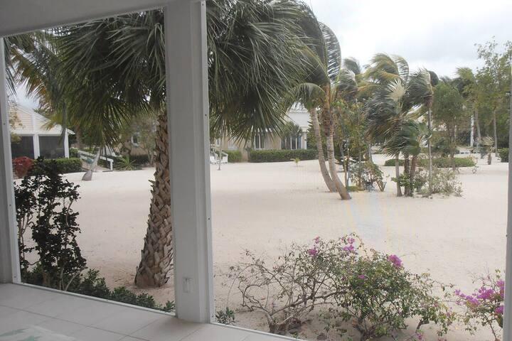 Garden#8  - Beach & Oceanfront Vacation Condo