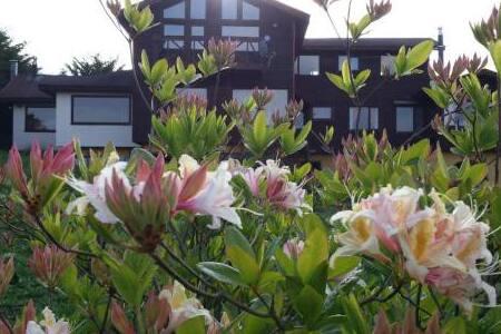 Casa arriendo diario 12 camas lago Llanquihue Xa R