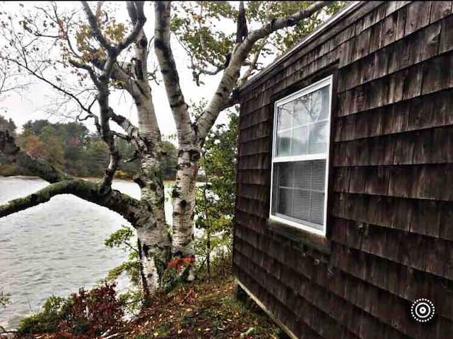 "Bowman Island rustic sea cabin/ ""glamping"" getaway"