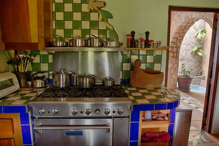 Professional cook stove makes every meal fun and possible.