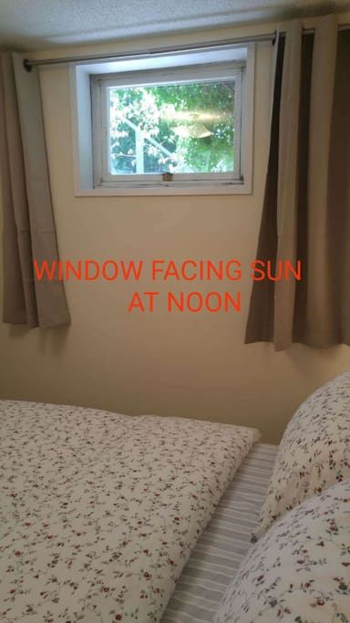 Window facing sun at noon