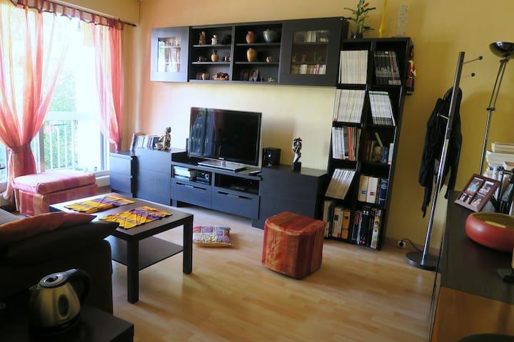 Meudon, meublé de 42m2 - Meudon - Apartament