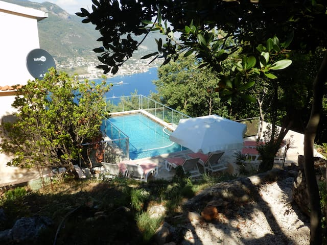 Zabrdje - 4 bedroom villa + pool overlooking bay - Lustica - Villa