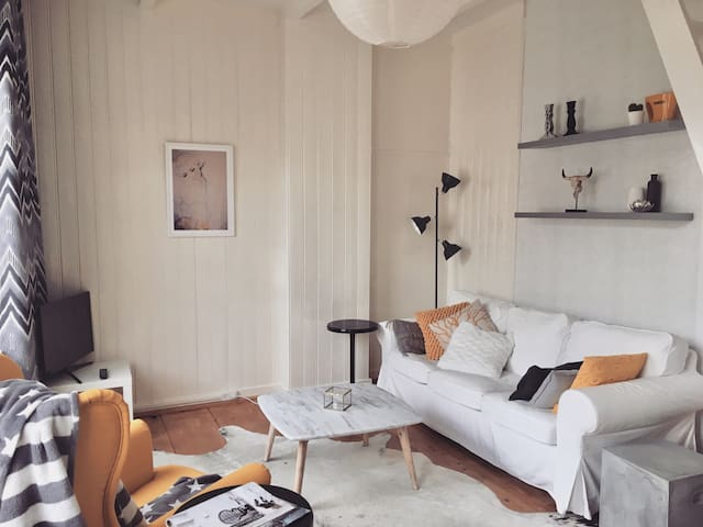 Charming 17th century City Center House in Haarlem
