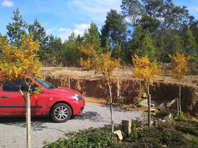 Estacionamento no Outono