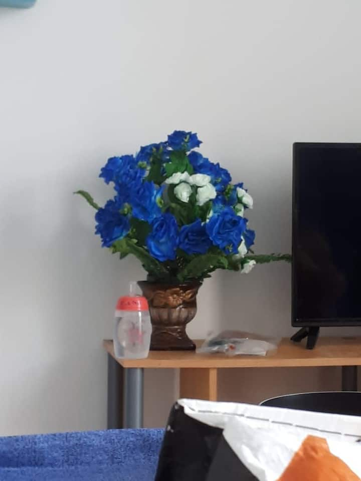 Studio 21m2 ( blue) vue mer pres  cite des arts