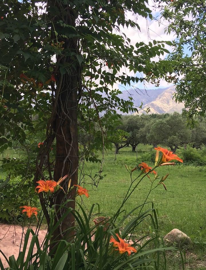 Sierras, arroyos, senderos, cabaña puro  confort