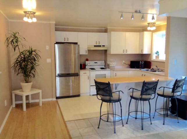 Functional 1 br lower Suite in family home. 2 only