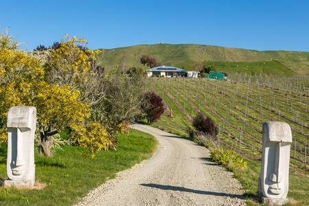 Vineyard setting with stunning mountain views