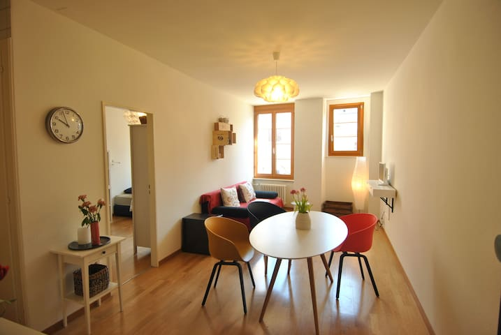 Cozy KING Size bed in private flat - Vevey - Apartemen