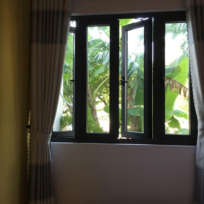 cửa sổ để xem room2 view