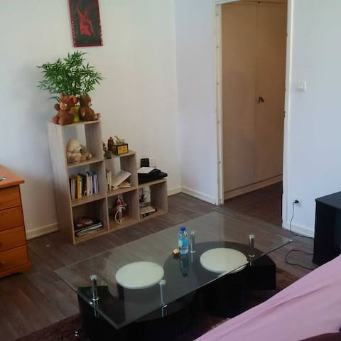 Cosy flat 25m2, 2'' from the city center ! - Štrasburk