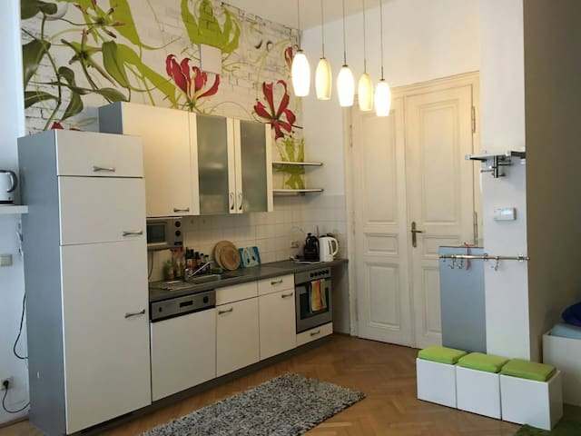 20m² in spacious&charming city apmt - Vienne - Loft