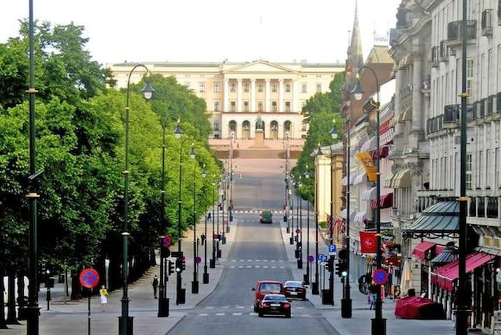 5 minutes walking distance to the Royal castle and Oslo's main avenue Karl Johansgate