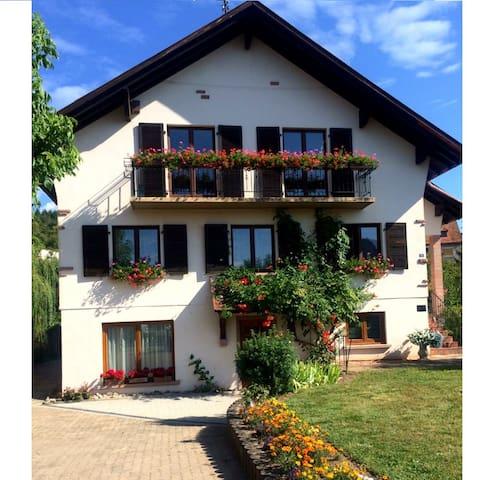 Grandeur Nature Route des vins, Alsace