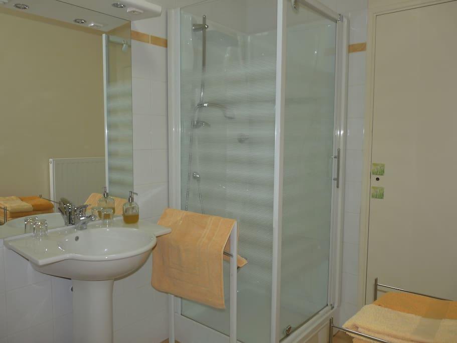 salle de bains plutôt spacieuse