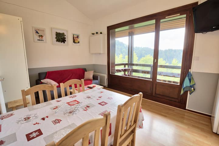 Quiet apartment close to leisure area and ski-bus stop