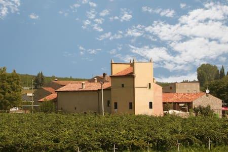La tranquillità all'Agriturismo Nicobresaola - Sommacampagna