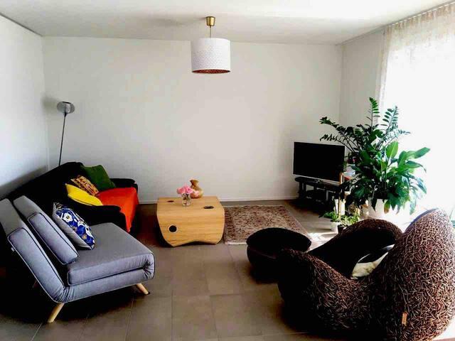 Specious modern apartment