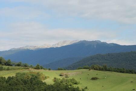 СельскийДом в Абхазии